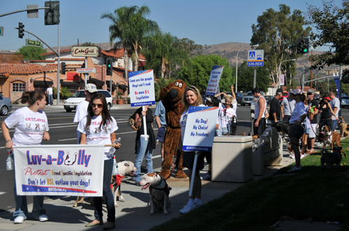 Our 2008 march to Brea City Hall.