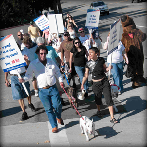 Over 100 angry dog owners marched down Brea Blvd to City Hall in peaceful protest.