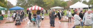 A large crowd gathering at Arovista Park and visiting vendor booths.