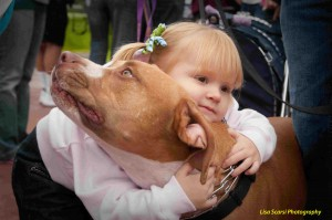 In Denver, CO and other cities with breed bans – bullies like this one have been confiscated and killed. Care to explain that to a child?