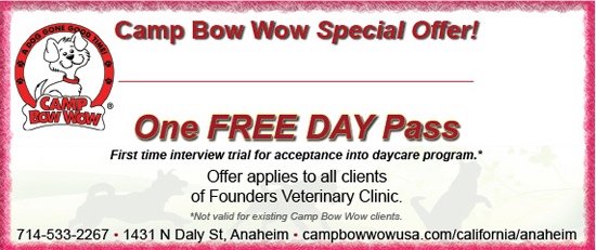 Camp Bow Wow Free Pass